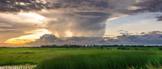 Natur - viele Wolken ueber gruener Wiese