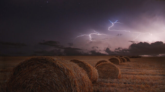 Gewitter ueber einem Getreidefeld