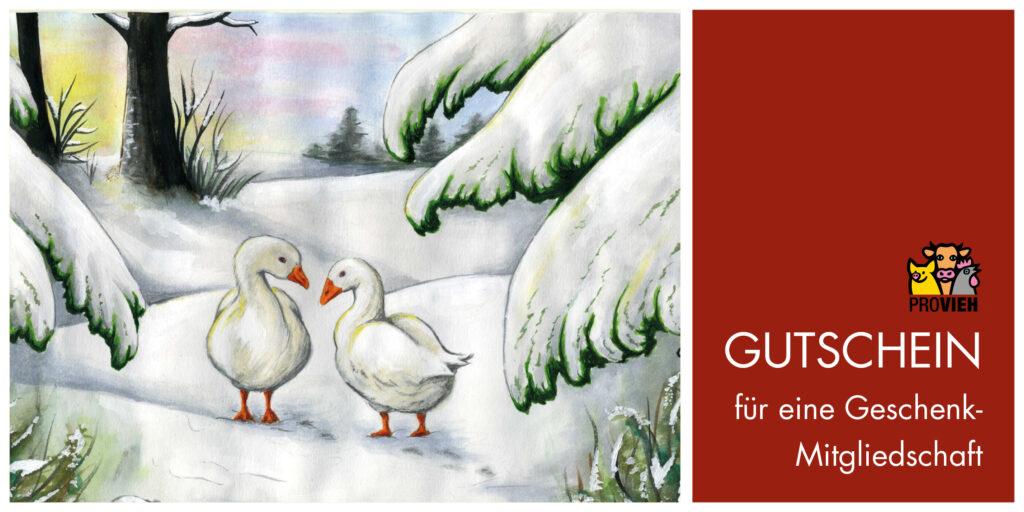 Rote Gutscheinkarte mit Wintergaense-Motiv für eine Geschenk-Mitgliedschaft
