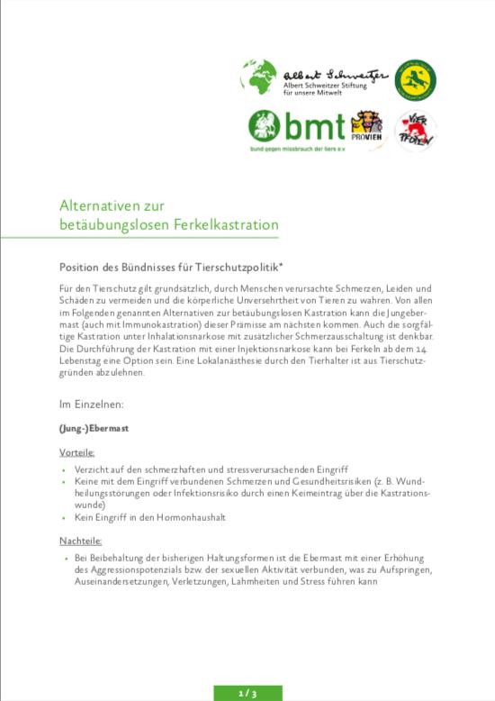 Brief zu Alternativen Ferkelkastration