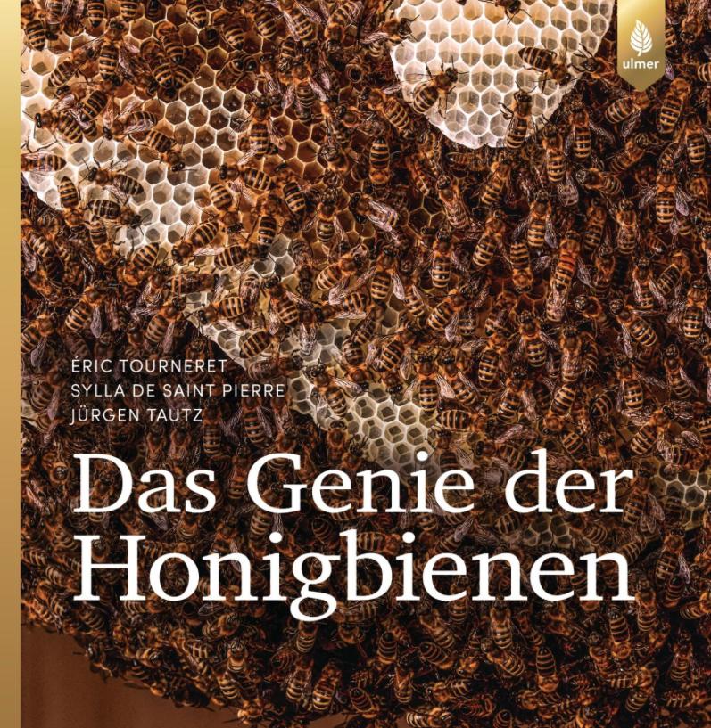 Buchvorstellung Das Genie der Honigbienen