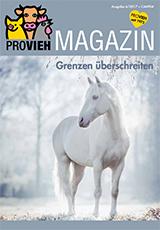Cover, ein weißes Pferd in einer winterlichen Landschaft