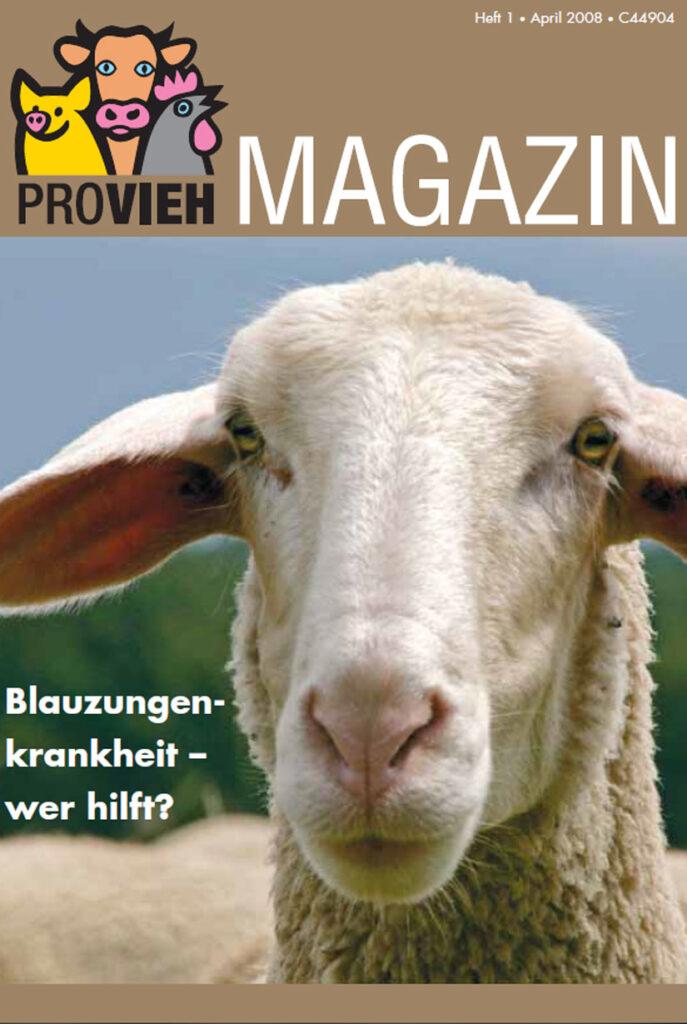 Cover, ein Schaf im Portrait