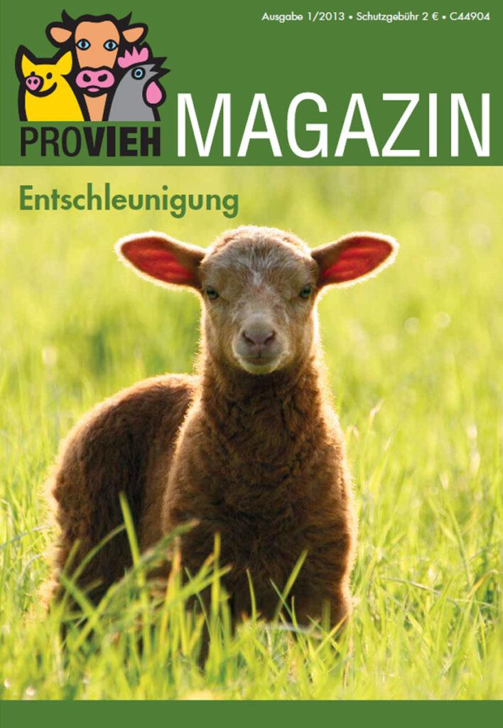 Cover, ein Lamm auf einer Wiese