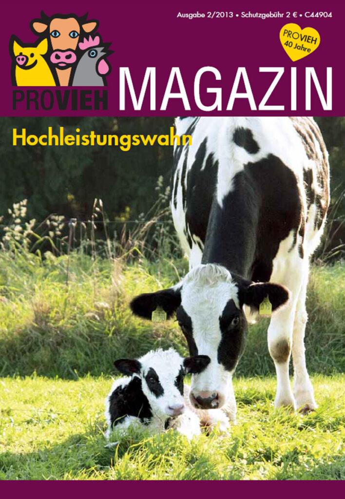 Cover, eine Kuh mit ihrem Kalb auf einer Wiese