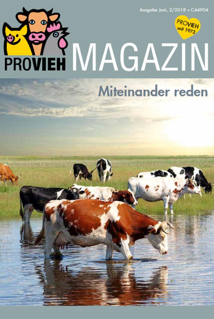 Cover, eine Kuhherde am Wasser