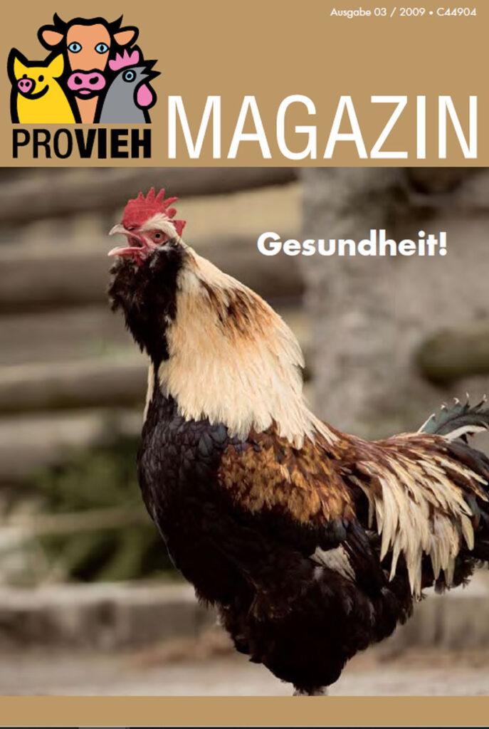 Cover, ein krähender Hahn