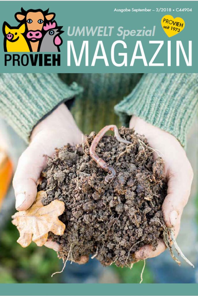 Cover, Erde in zwei Händen mit Regenwürmern
