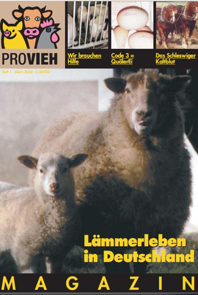 Cover, zwei Schafe schauen in die Kamera