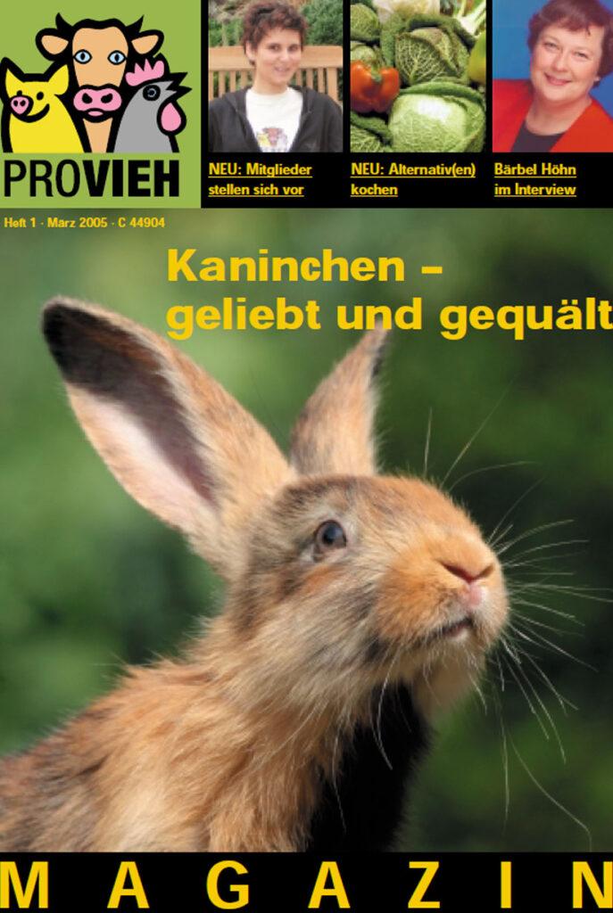 Cover, ein Hase im Freien