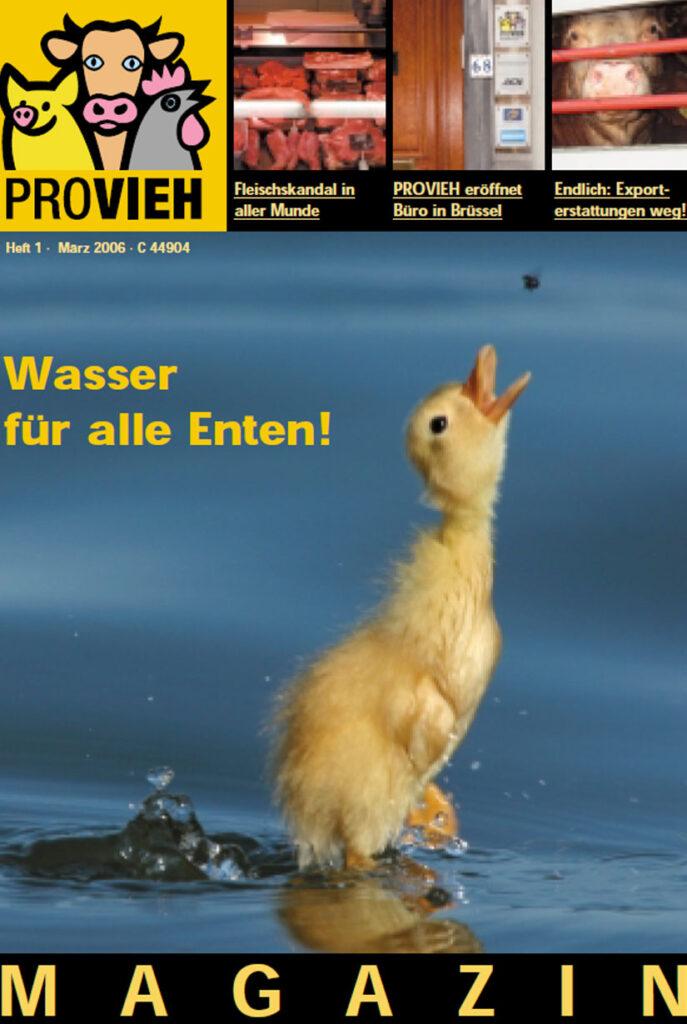 Cover, eine Ente im Wasser