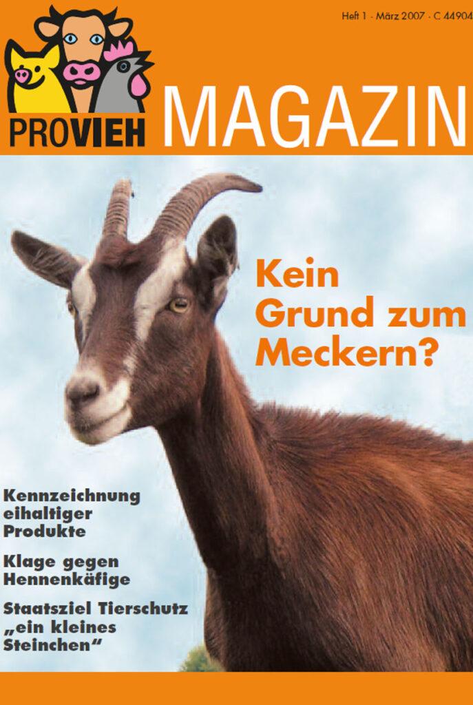 Cover, eine Ziege im Portrait