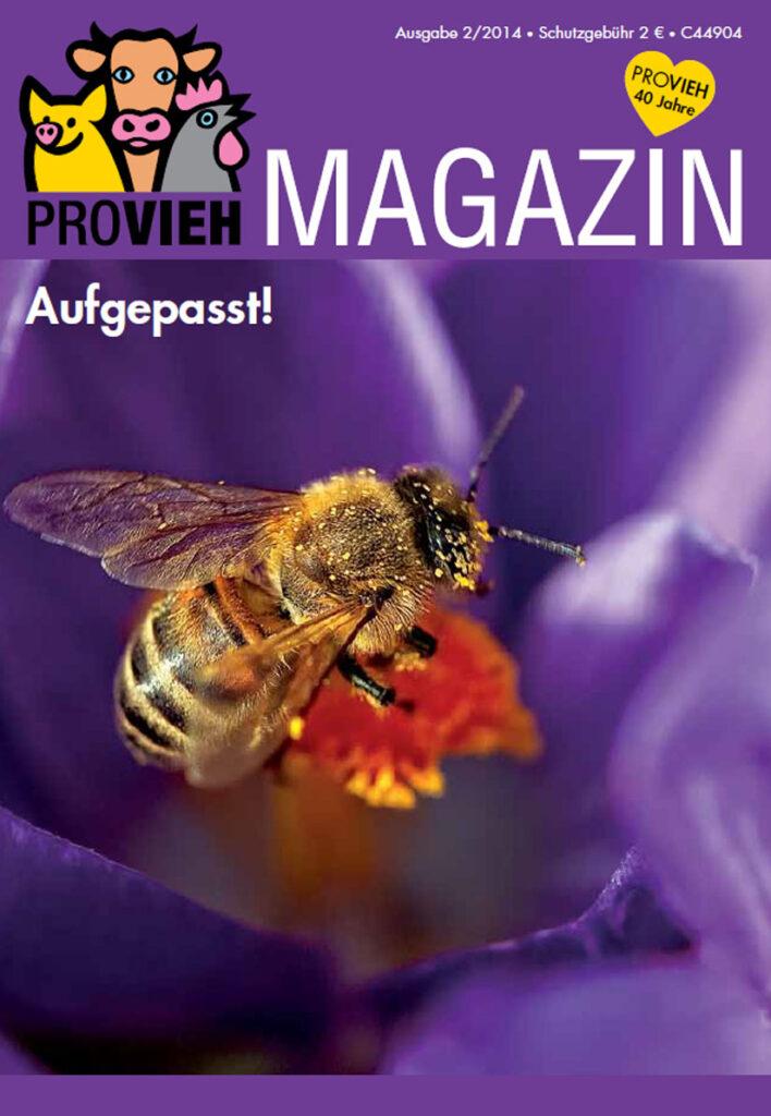 Cover, eine Biene auf einer Blume