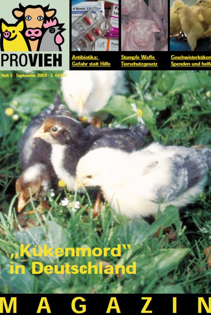 Cover, Küken im Gras