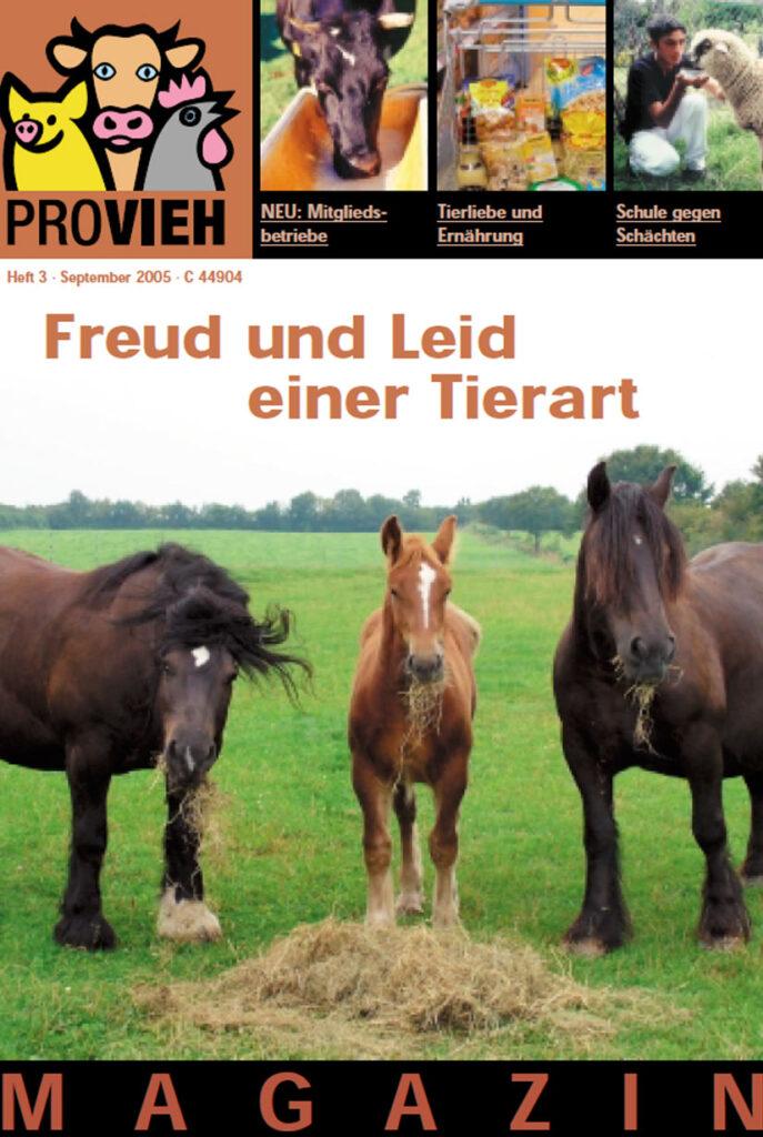 Cover, drei Pferde auf einer Wiese