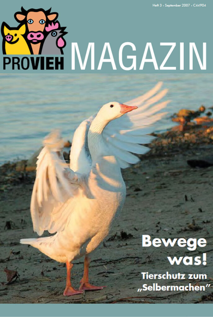 Cover, eine Gans streckt ihre Flügel aus