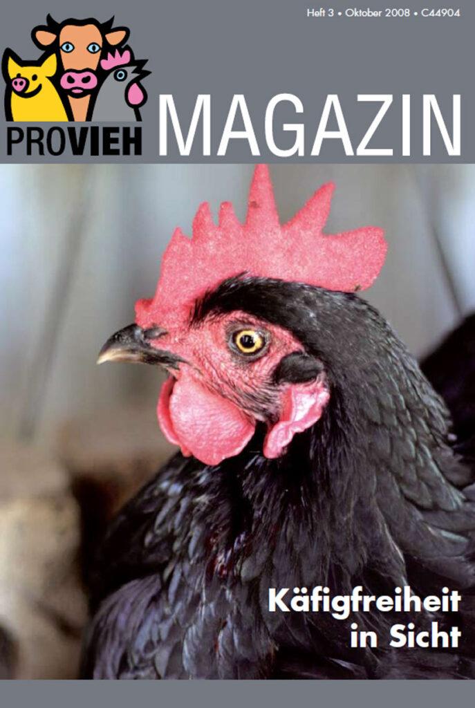 Cover, ein schwarzes Huhn im Portrait