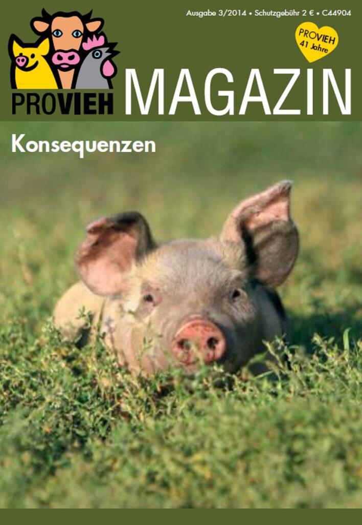 Cover, eine Schwein versinkt im Grünen