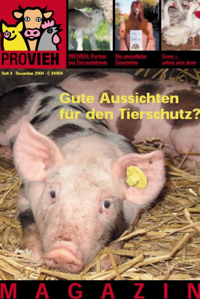 Cover, ein Schwein im Stroh