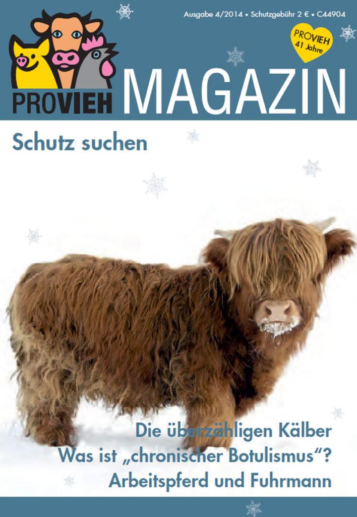 Cover, eine Kuh im Schnee