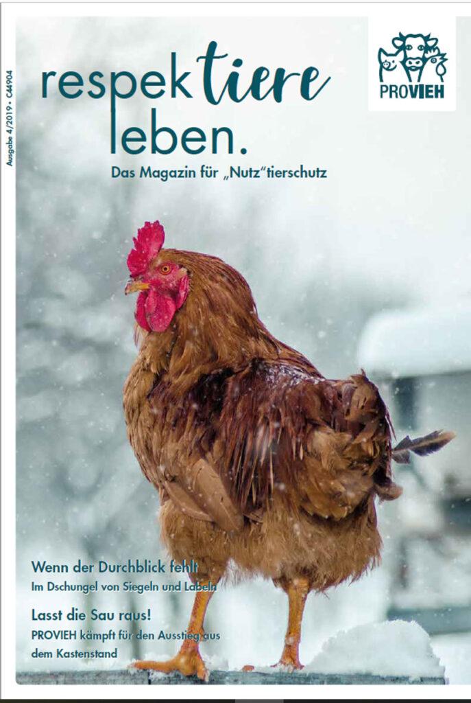 Cover, ein Huhn in winterlichen Landschaft