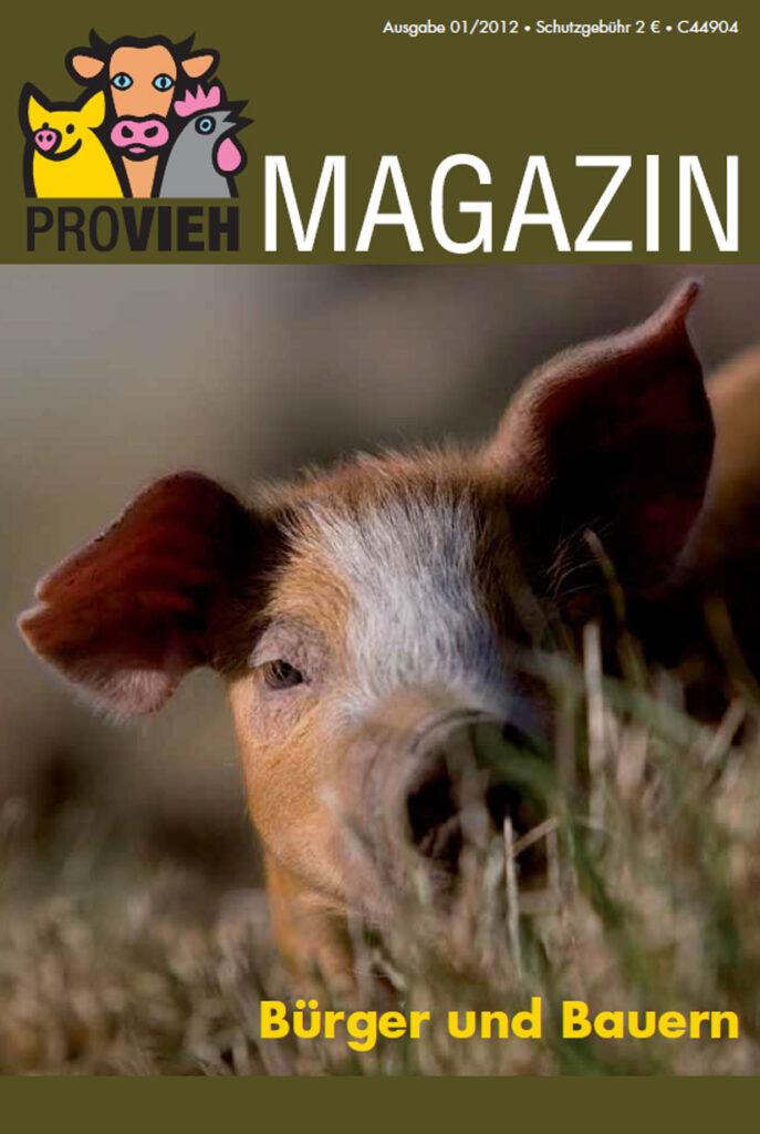 Cover, ein Schwein