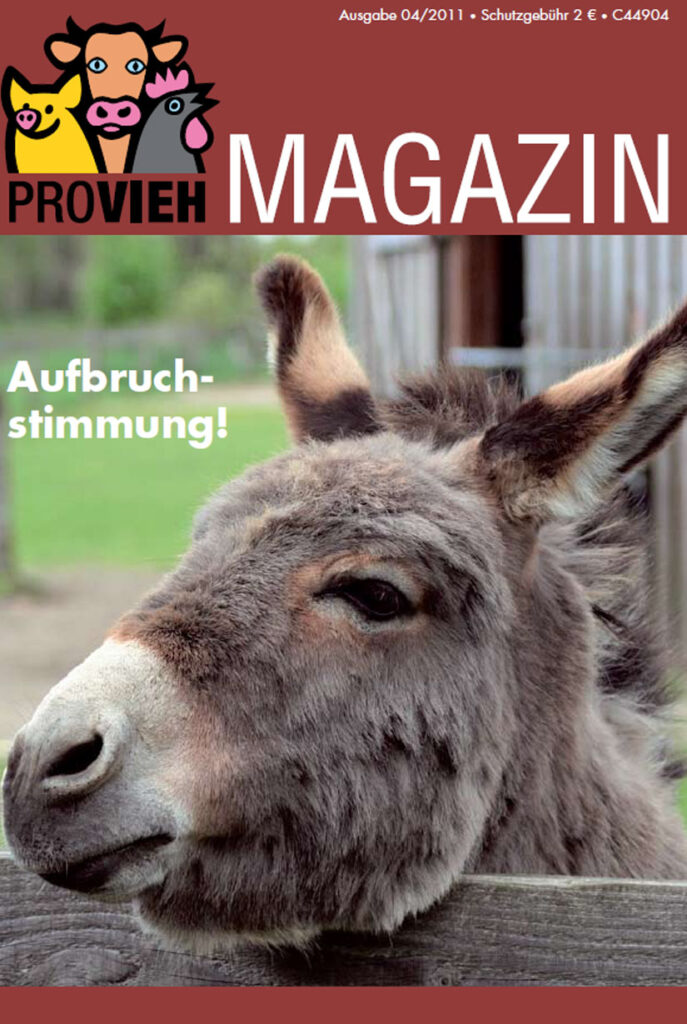 Cover, ein Esel schaut über den Zaun