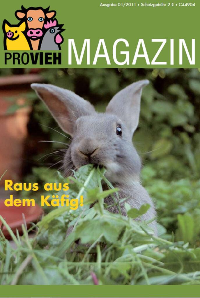 Cover, ein Hase im Grünen