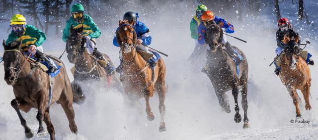 Fünf Pferde beim Pferderennen