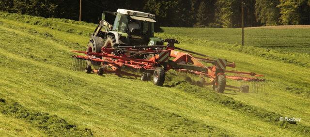 Ein Traktor wendet das Gras