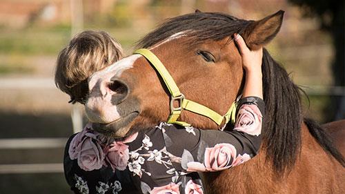 Eine Frau umarmt ein glückliches Pferd