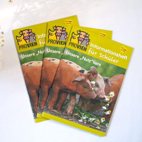 Schülermagazin