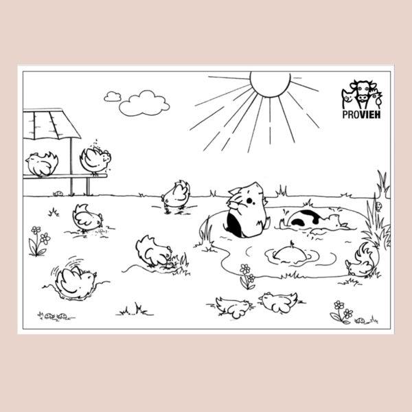 Ausmalpostkarte - Glückliche Hühner und Schweinchen