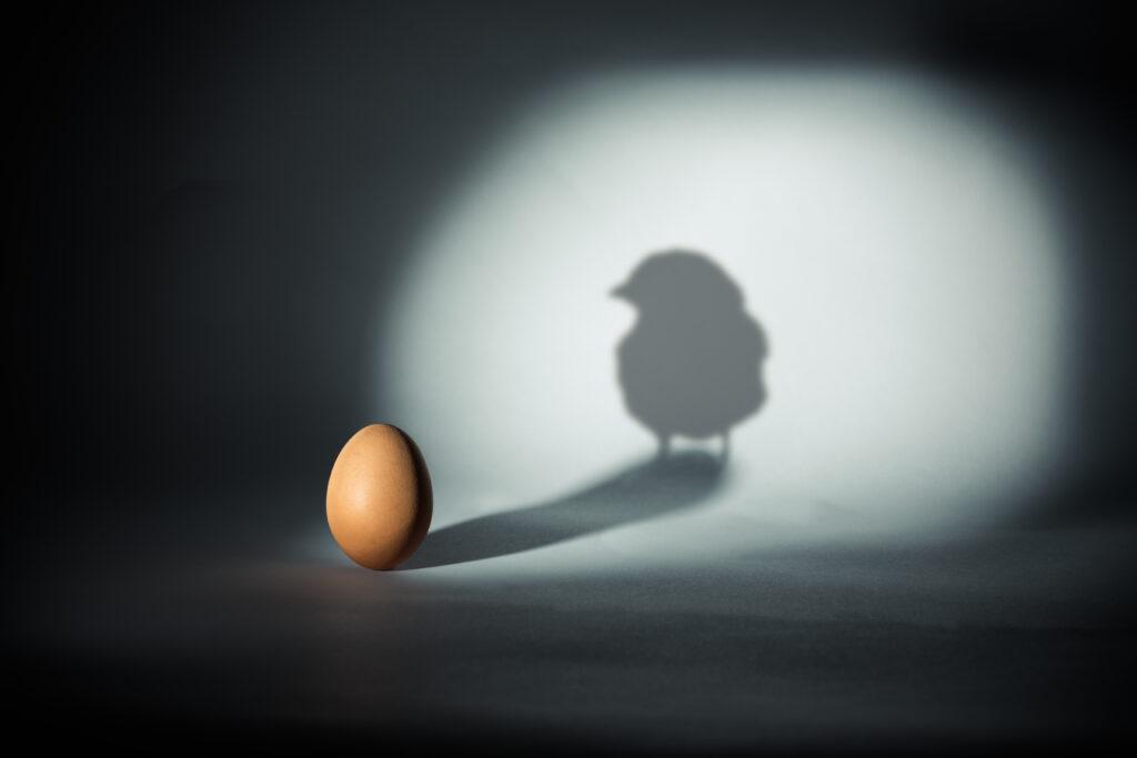 Küken und Ei