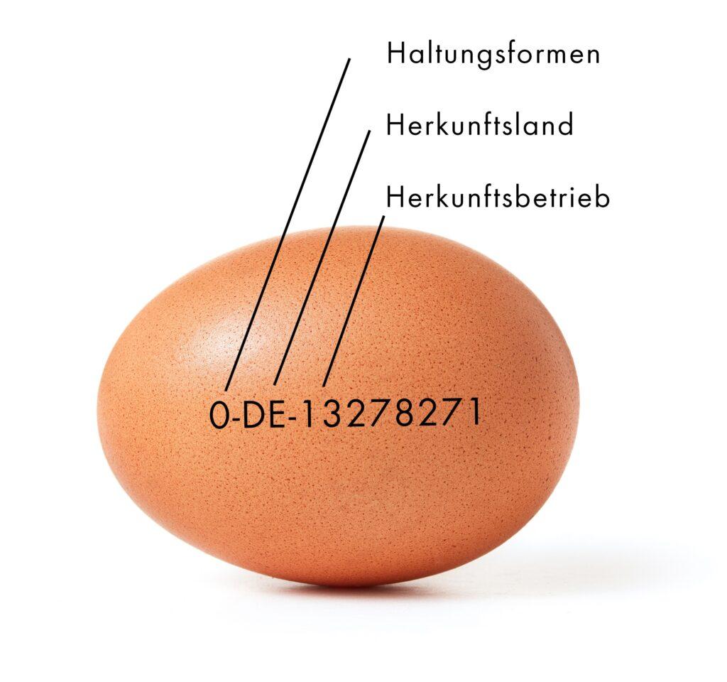 Haltungsformen auf einem Ei