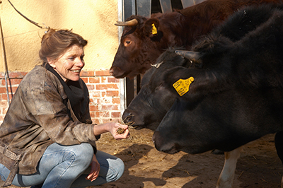 Eine Frau Sreichelt Kühe