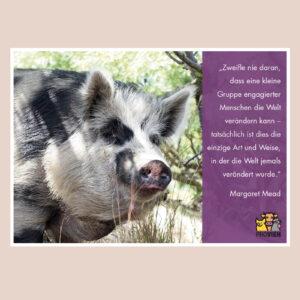 """Postkarte """"Veränderung"""" - Zitat Margaret Mead"""