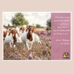 "Postkarte Ziegen ""Zauber!"" - Zitat Johann Wolfgang von Goethe"