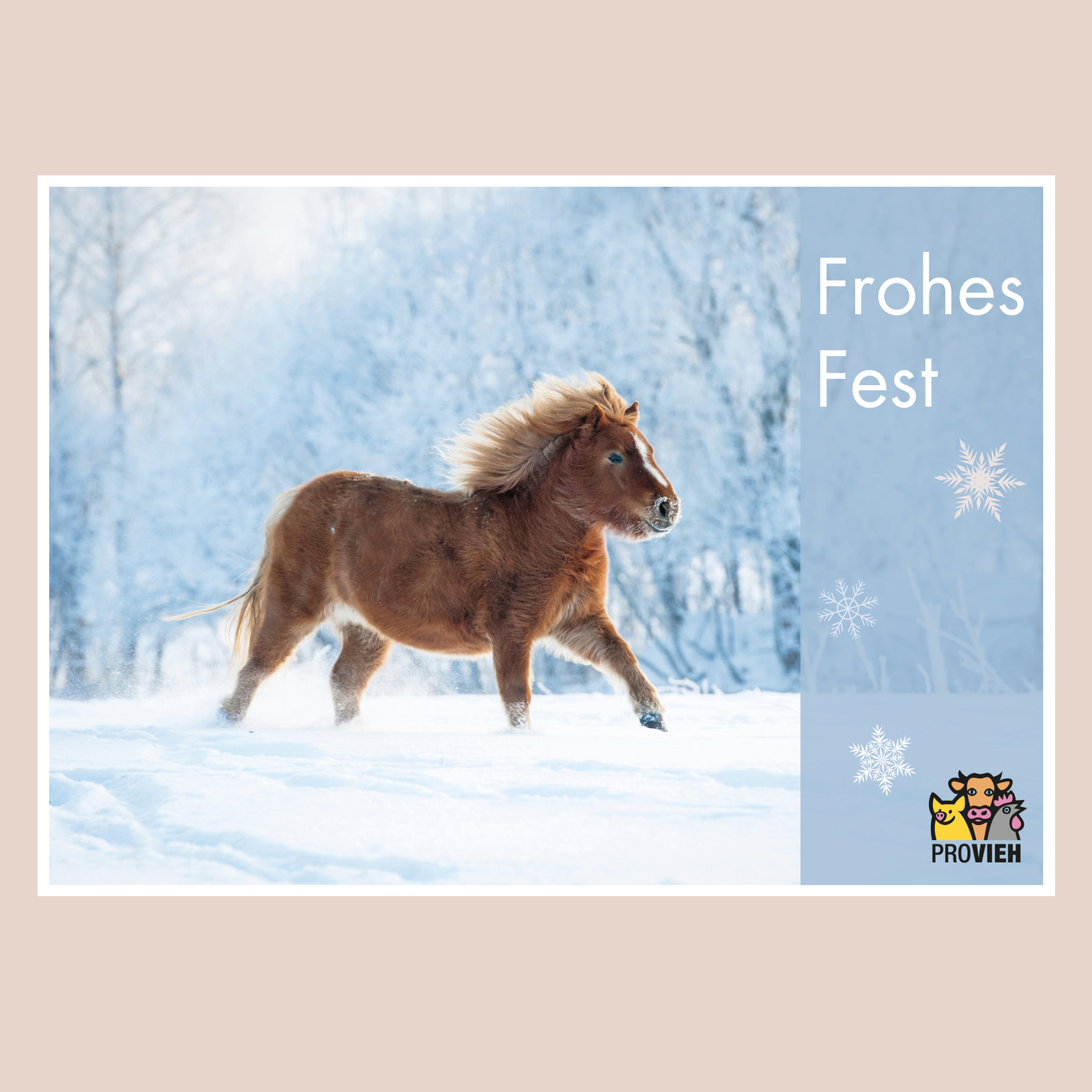 "Postkarte Pony ""Frohes fest"""