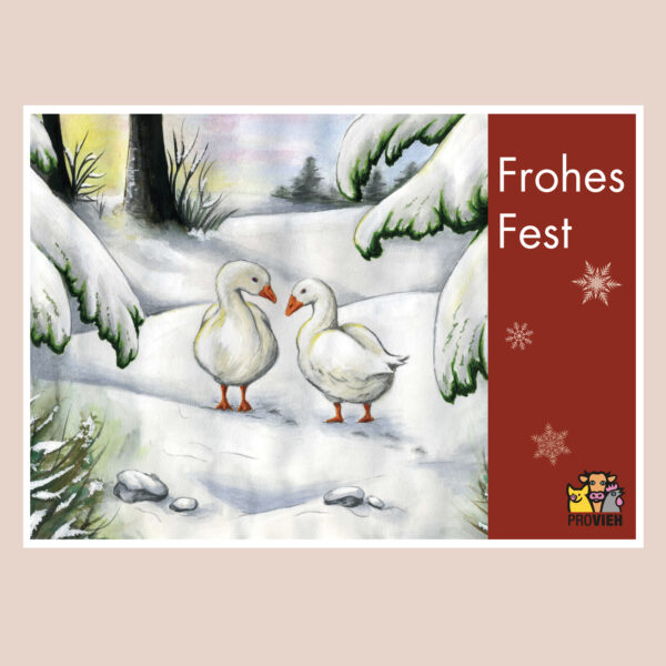 "Postkarte Gänse im Schnee ""Frohes Fest"""
