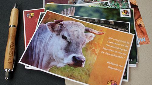 Postkarten und Stift