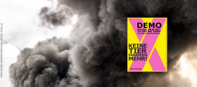 Brand, Rauch Demoaufruf