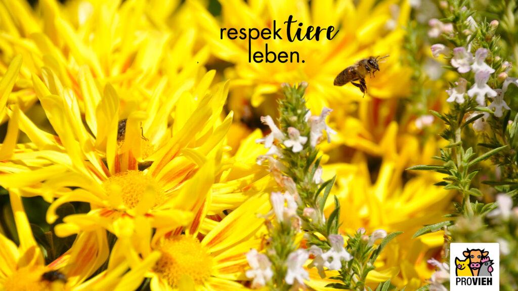 Wallpaper Bienen