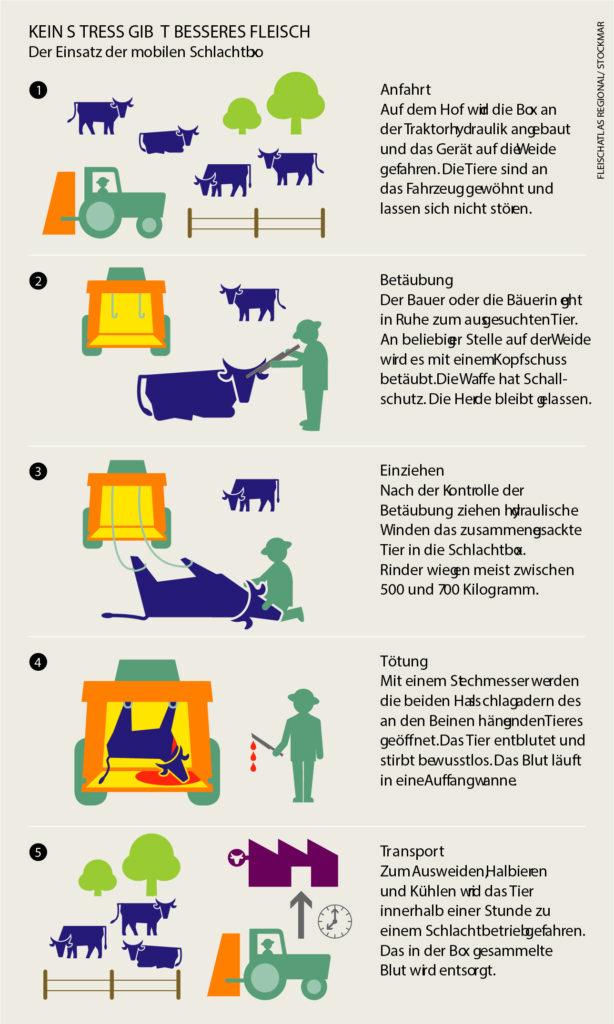 Grafik über die Funktion der Schlachtbox