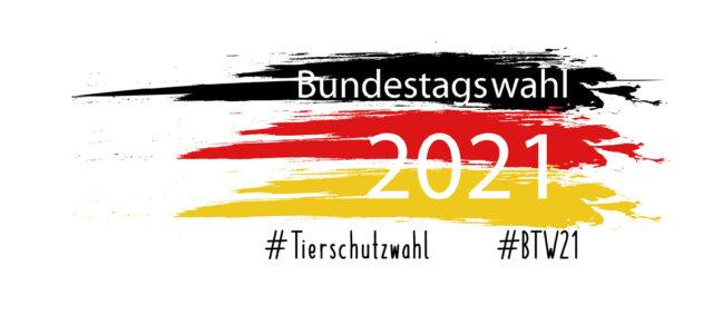 Deutschlandflagge und Bundestagswahl