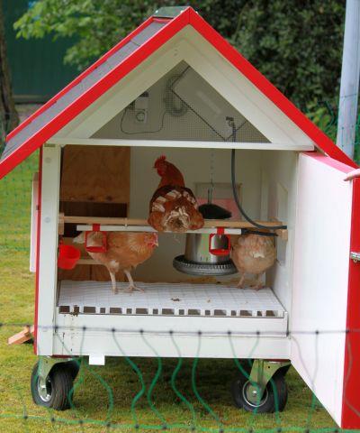 Ein mobiles Hühnerhaus von innen