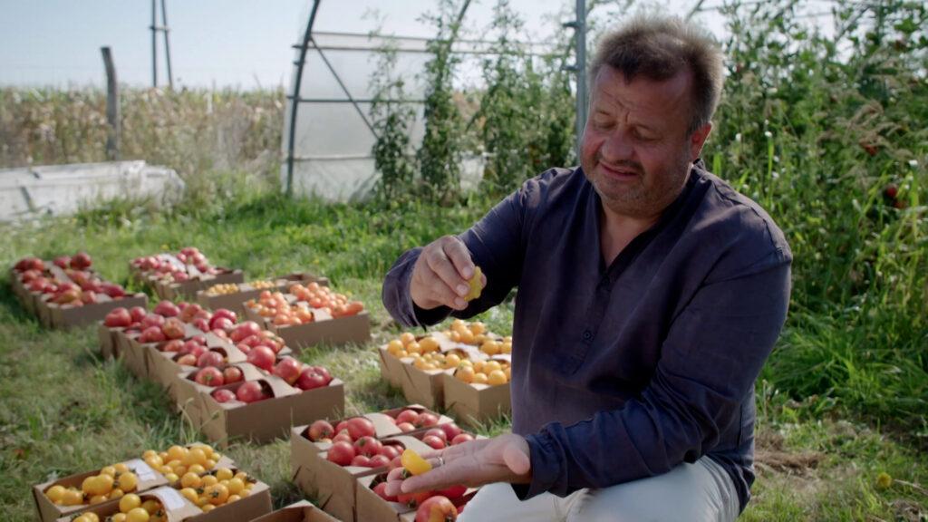Ein glücklicher Tomatengärtner