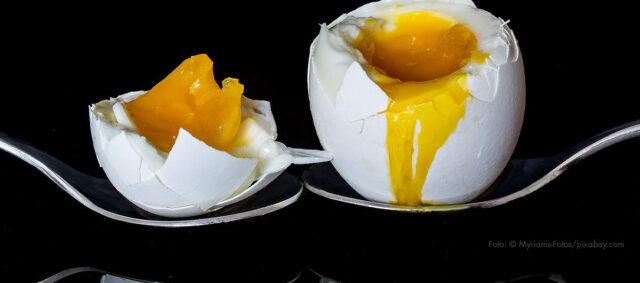 Ein gekochtes aufgeschlagenes Ei