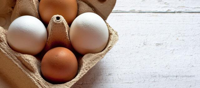 Braune und weiße Eier in einem Eierkarton